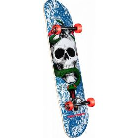 Powell Peralta Skull and Snake One Off Complete Skateboard
